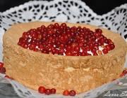 Tort cu coacaze rosii si crema de iaurt.