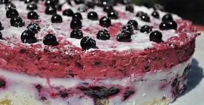 Tort cu iaurt si spuma de coacaze negre_01